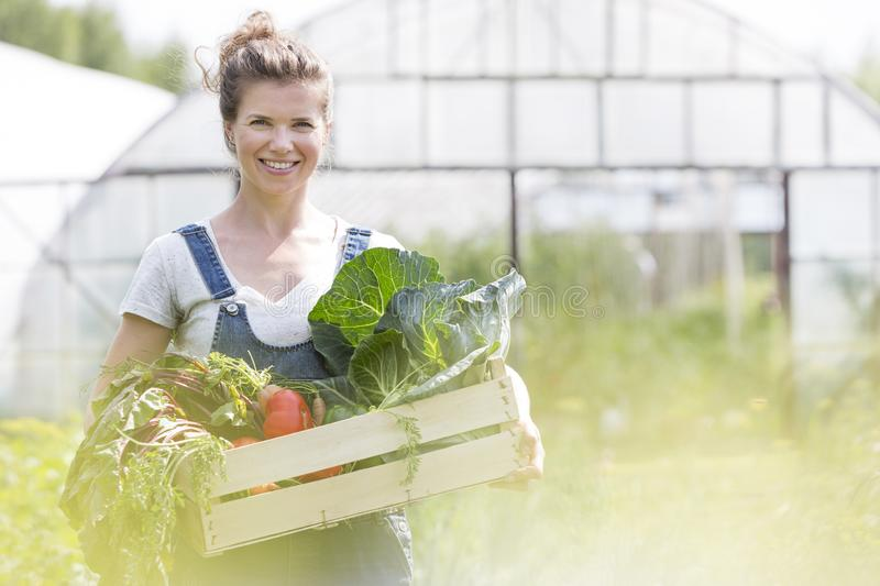 Portrait of smiling woman holding vegetables in crate at farm stock images