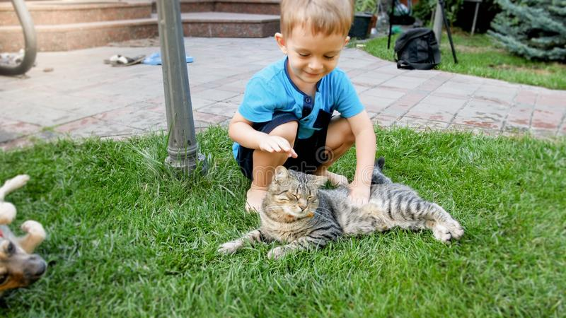 Portrait of happy smiling 3 years old little boy caressing and playing with cat lying on the grass at house backyard. Portrait of smiling 3 years old little boy royalty free stock photography