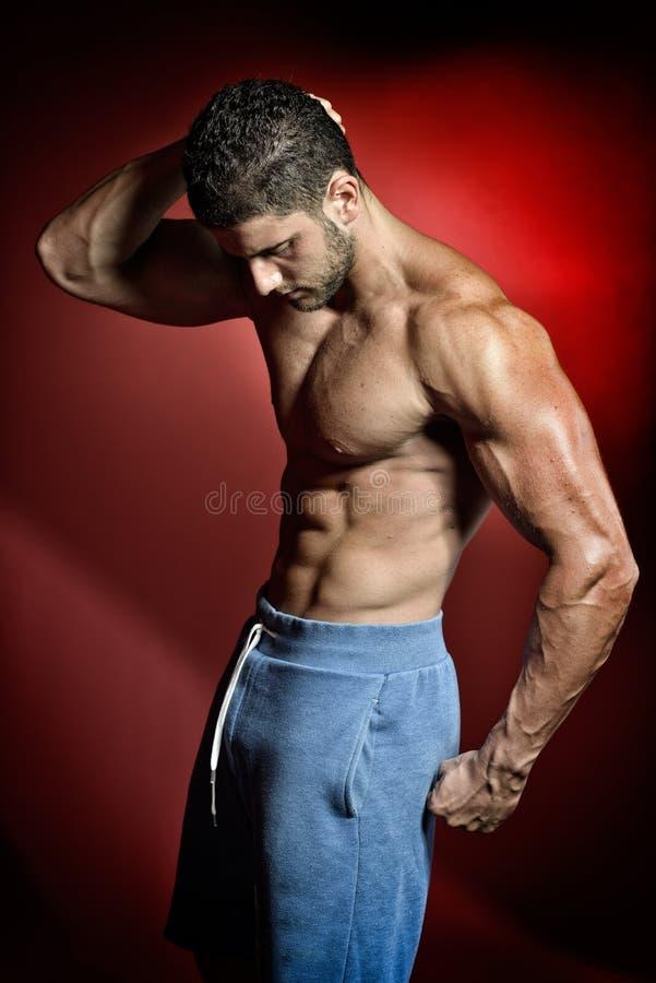 Download Portrait Sportif D'homme Dans Le Studio Image stock - Image du homme, visage: 56482145