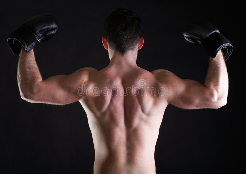 Download Portrait Sportsman Boxer In Studio Dark Background Stock Photo - Image of person, background: 34263390