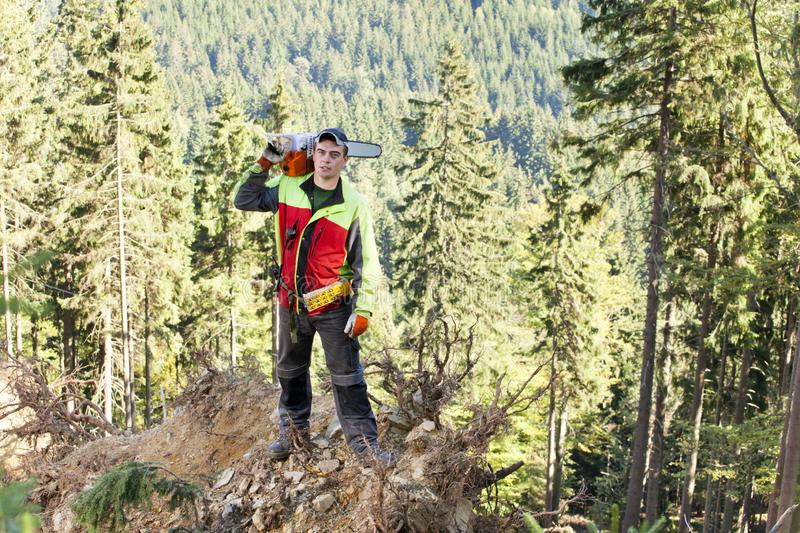 Portrait of strong lumberjack in deep forest. He is standing on a large refuted tree stump over the wooded valley with chainsaw on his shoulders stock images