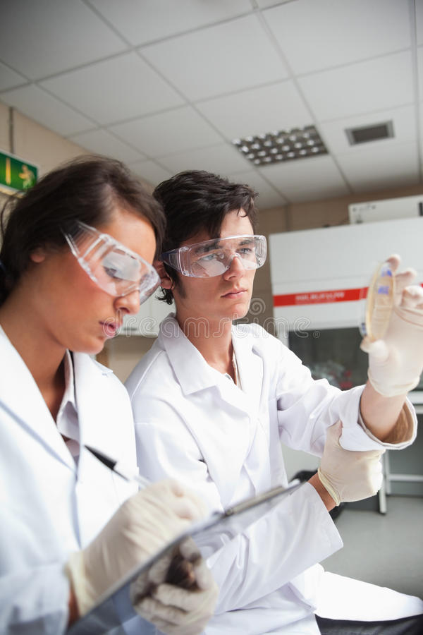 Portrait of students in science looking
