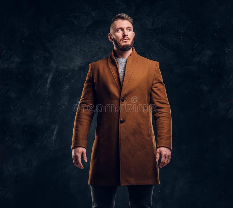 Portrait of a stylish male wearing the demi-season coat. Men`s beauty, seasonal fashion. Studio photo against a dark stock images