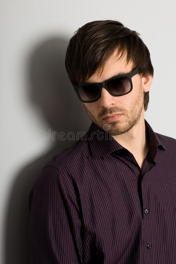 Download Portrait stylish young man stock image. Image of gray - 22885465