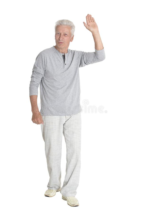 Portrait of successful senior man posing on white background royalty free stock images