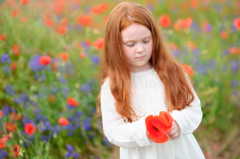 Portrait of sweet kid girl standing with red wild flowers in her stock photo