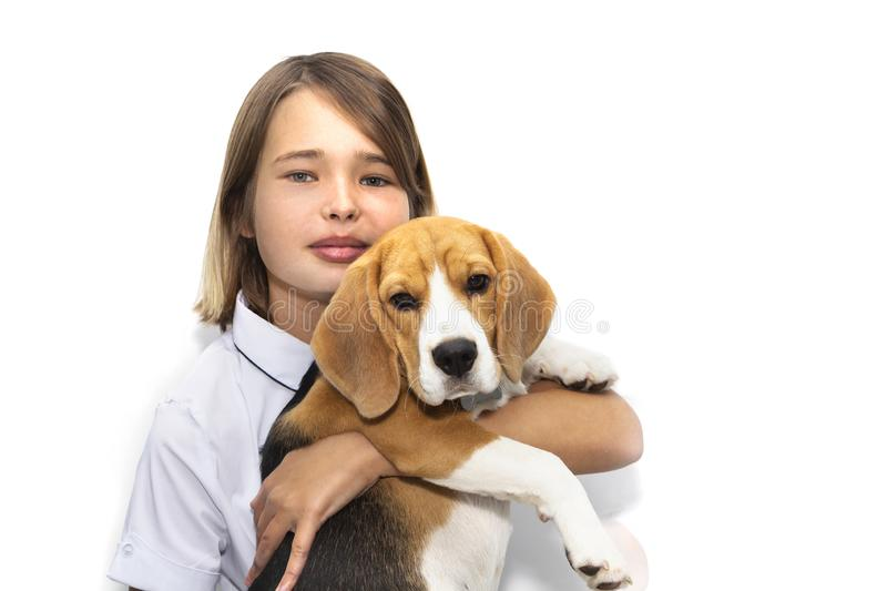 Portrait of a teenage girl with a dog breed Beagle stock photo