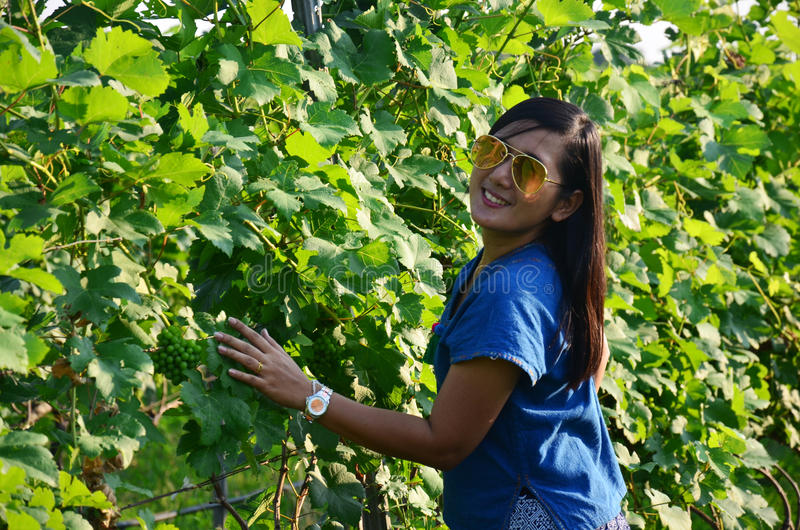 Portrait thaïlandais de femmes dans le jardin de raisin images libres de droits