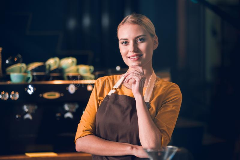 Pensive woman having job in cafe stock image