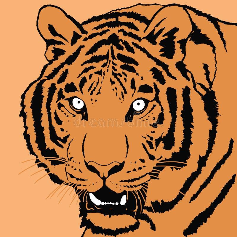 Portrait of tiger royalty free illustration