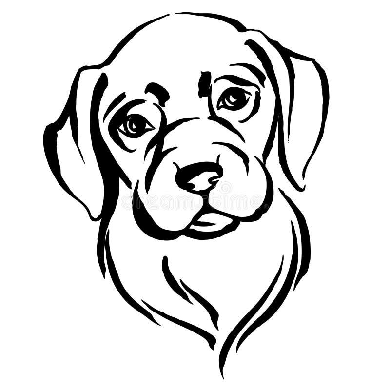 Portrait tiré par la main de chien Labrador Rebecca 36 illustration de vecteur