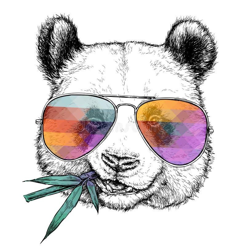 Portrait tiré par la main de panda drôle en verres avec la branche en bambou Illustration de vecteur d'isolement sur le blanc illustration de vecteur