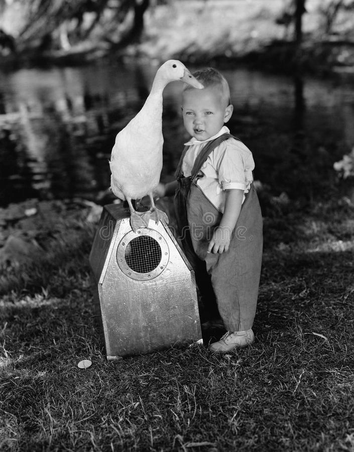 Portrait of toddler with duck stock photos