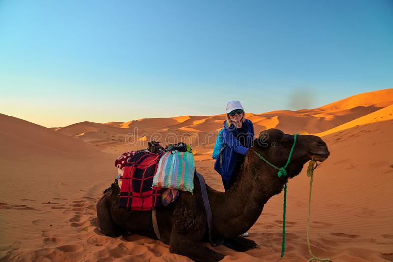 Portrait of a tourist girl and a camel in the Sahara desert royalty free stock image