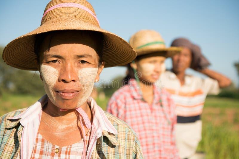 Portrait traditionnel d'agriculteurs de Myanmar d'Asiatique photographie stock libre de droits