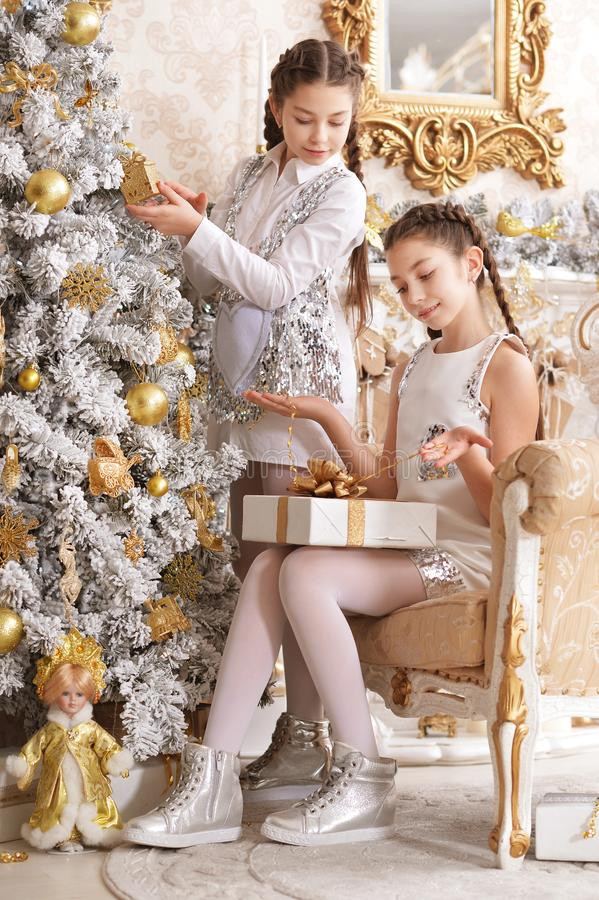 Portrait of two beautiful twin sisters celebrating Christmas holiday stock photo