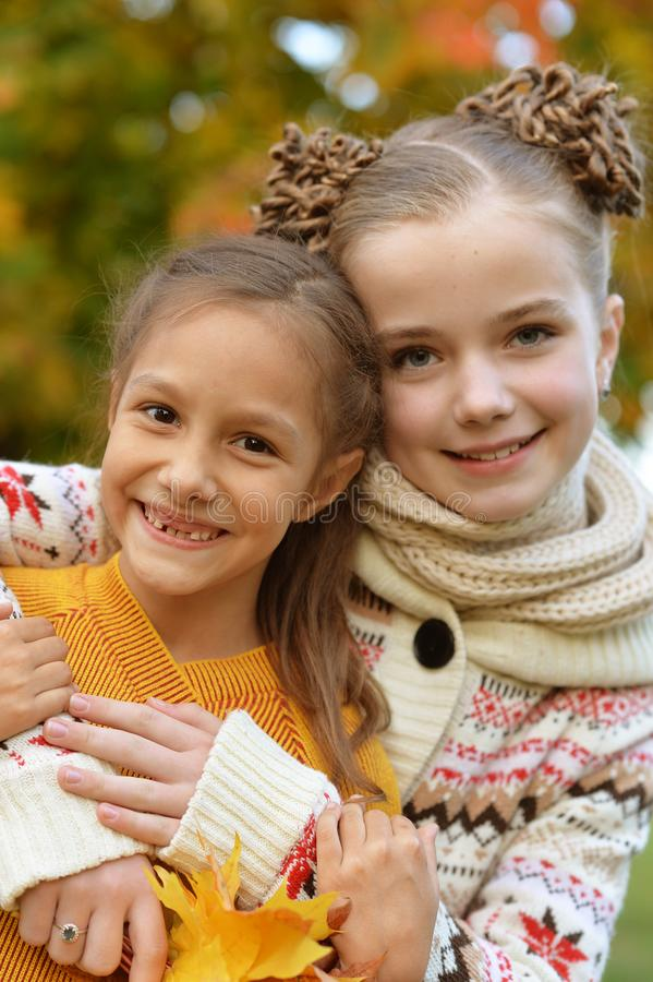 Portrait of two cute little sisters looking at camera in park stock photos