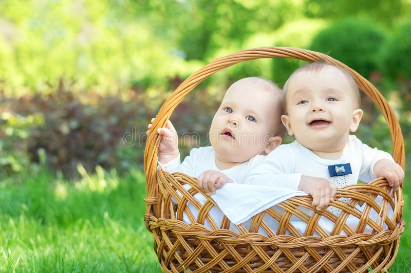 Outdoor activity for families with kids: Portrait of two little infant boys sitting in wicker basket on grass on picnic stock photo