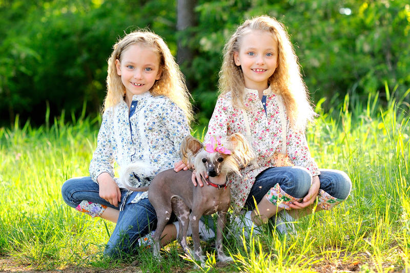 Portrait of two twins stock images
