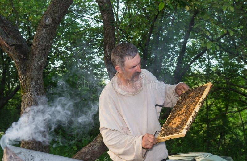 Portrait of Ukrainian peasant hard working in own bee yard royalty free stock image