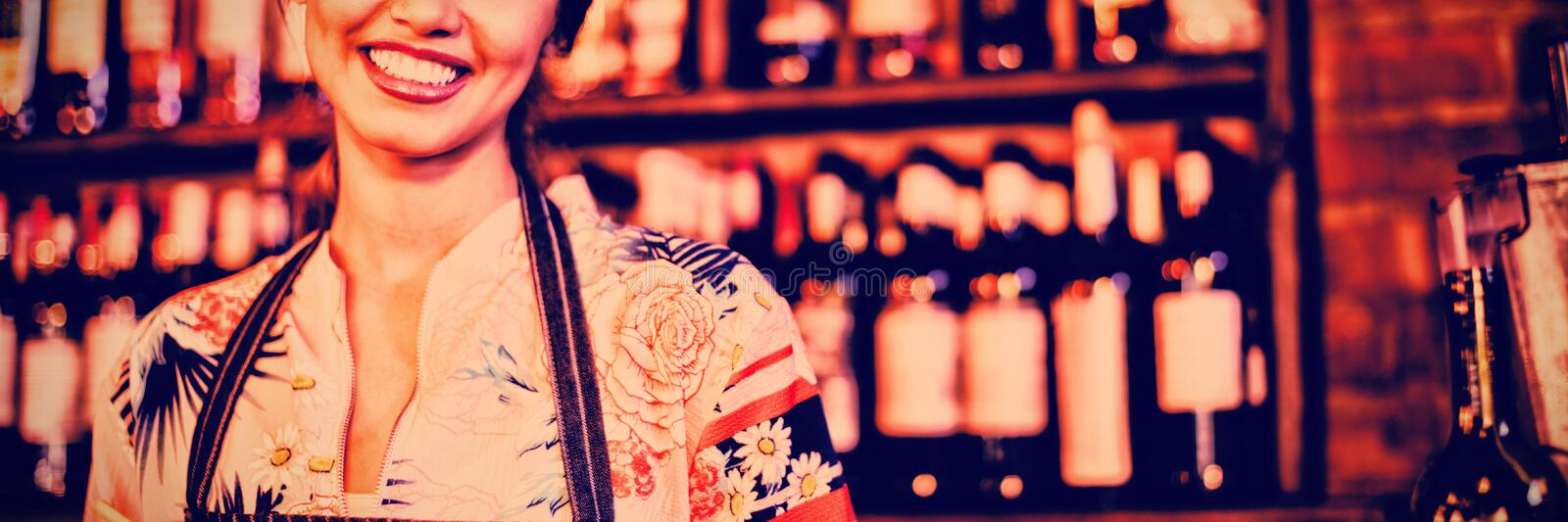 Portrait of waitress taking an order on notepad royalty free stock images