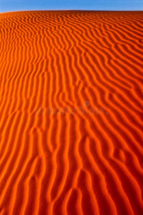 Download Portrait Of A Wind Rippled Dune Stock Images - Image: 17588294