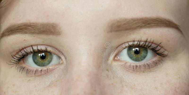 Woman with freckles stock photo