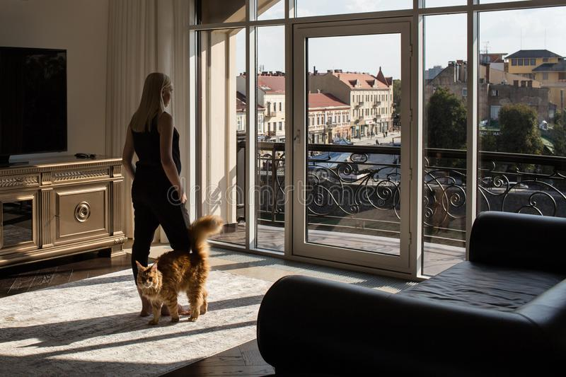Portrait of a woman in the interior with two dogs and a cat royalty free stock images