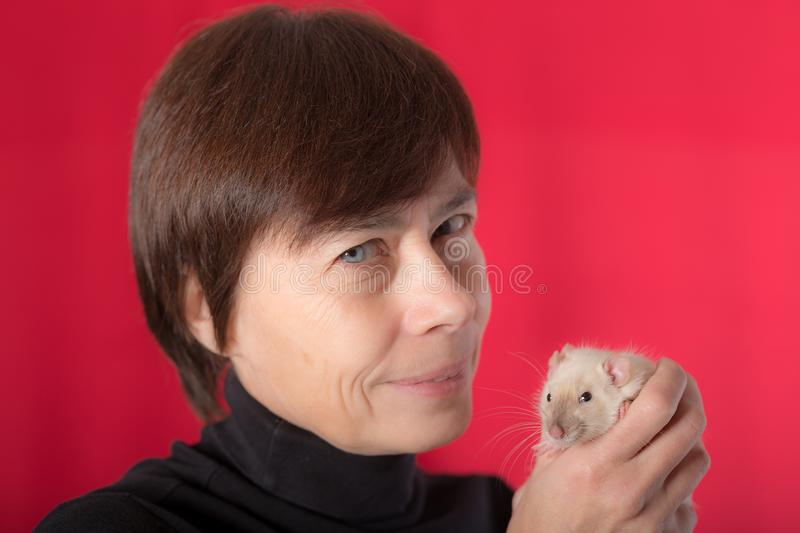 Portrait of a woman with a rat stock photography