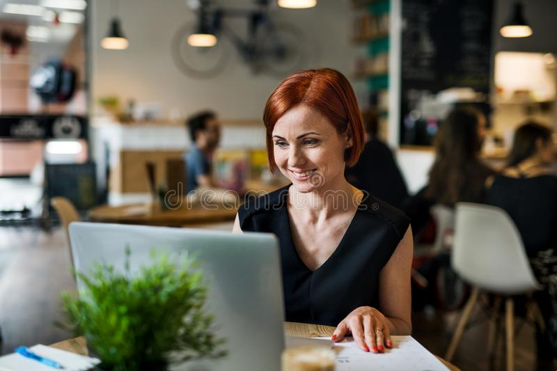 A portrait of woman sitting at the table in a cafe, using laptop. royalty free stock photos