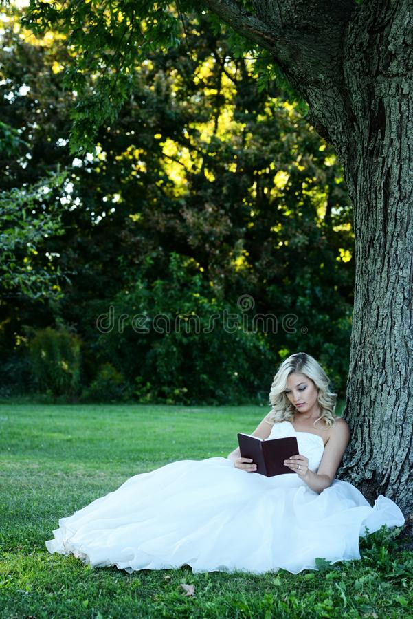 Woman in white tulle dress reading book leaning on tree royalty free stock photo