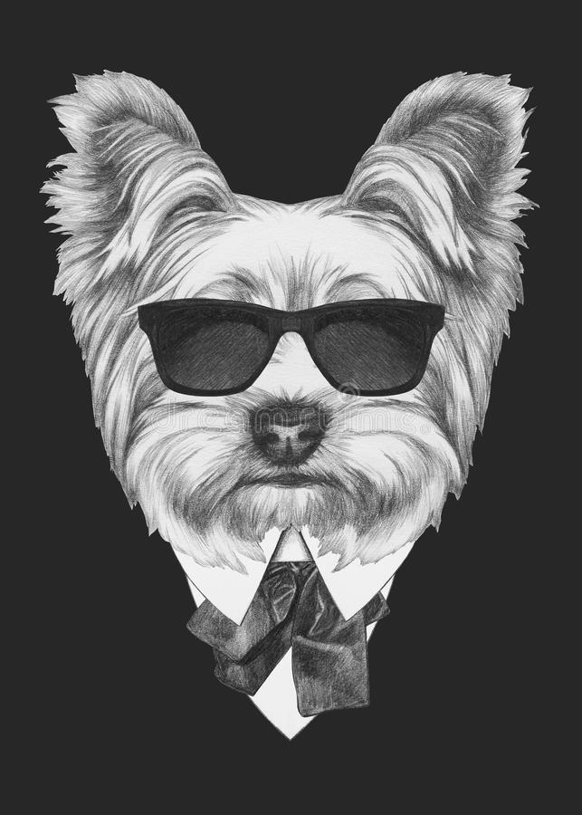 Portrait of Yorkshire Terrier in suit. stock illustration