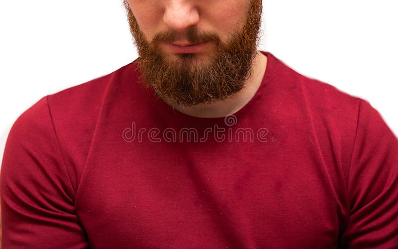 Portrait youn man with messy brown orange beard and moustache and messy hair. Bearded hipster on isolated white. Portrait youn man with messy brown orange beard stock photos