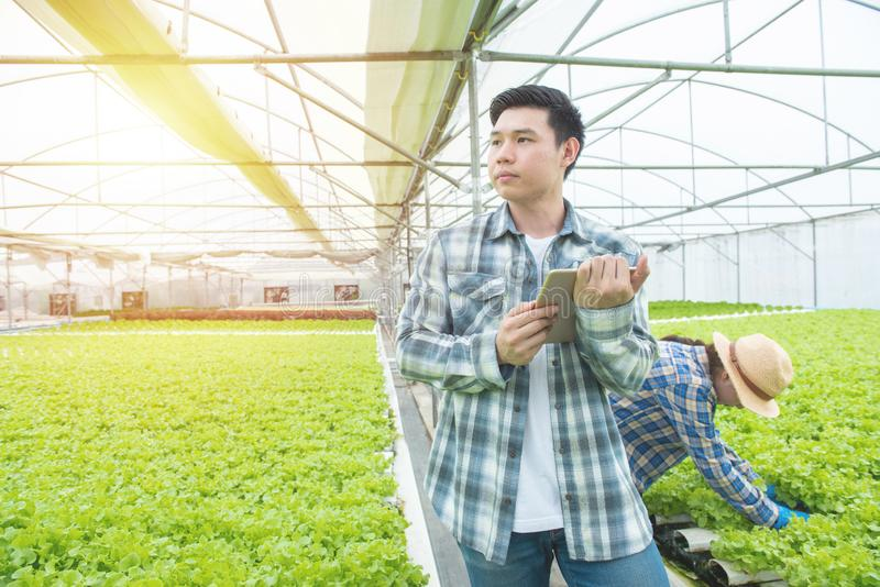 Portrait of young asian professional farmer man hand hold tablet with asian woman coworker working in greenhouse hydroponic stock image