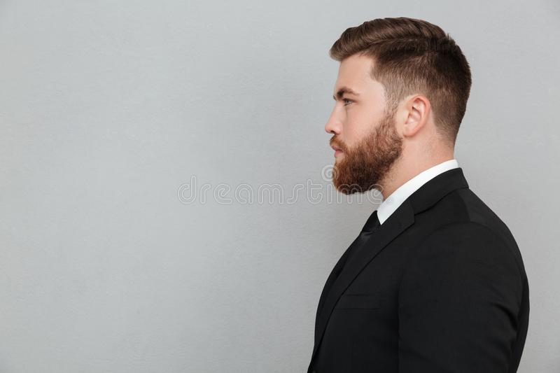 Portrait of a young bearded man in suit looking forward royalty free stock photos