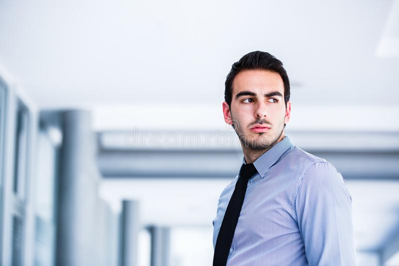 Portrait of young beautiful business man royalty free stock photo