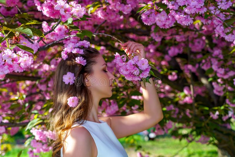 Portrait of young beautiful girl with pink flowers in her hair in white dress poses tender in blossom sakura tree in the garden stock photography