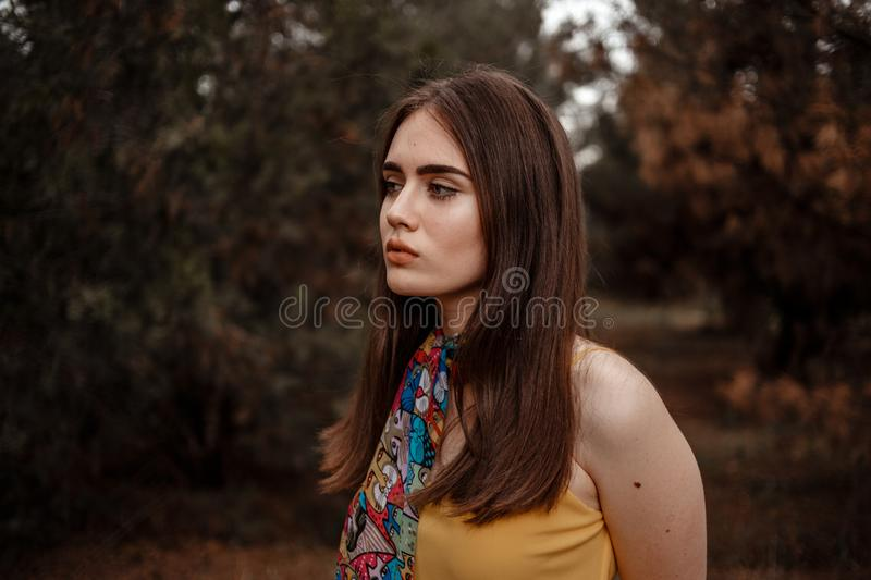 Portrait of a young beautiful girl in a yellow vintage dress in the forest royalty free stock photos