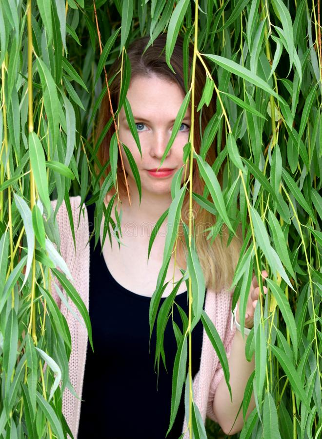 Portrait of young beautiful woman looking from behind green willow branches stock image
