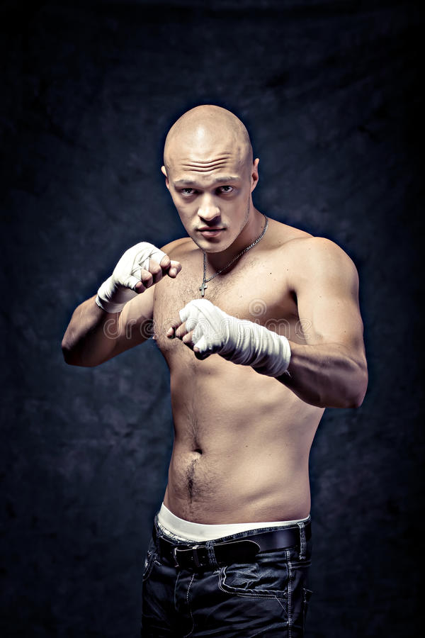 Portrait Of A Young Boxer Stock Images