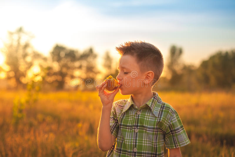 Portrait of young boy eating peach. Happy child in sun summer day. Kid with fruit in nature background. royalty free stock photography