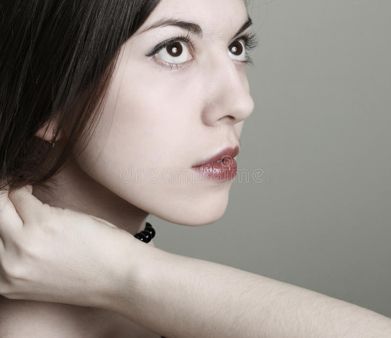 Download Portrait Of The Young Brunette Stock Photo - Image: 12835864