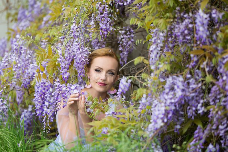 Portrait of young Caucasian woman with blond hair near purple wisteria,smelling the blooms, enjoying wisteria, looking straight to stock photography