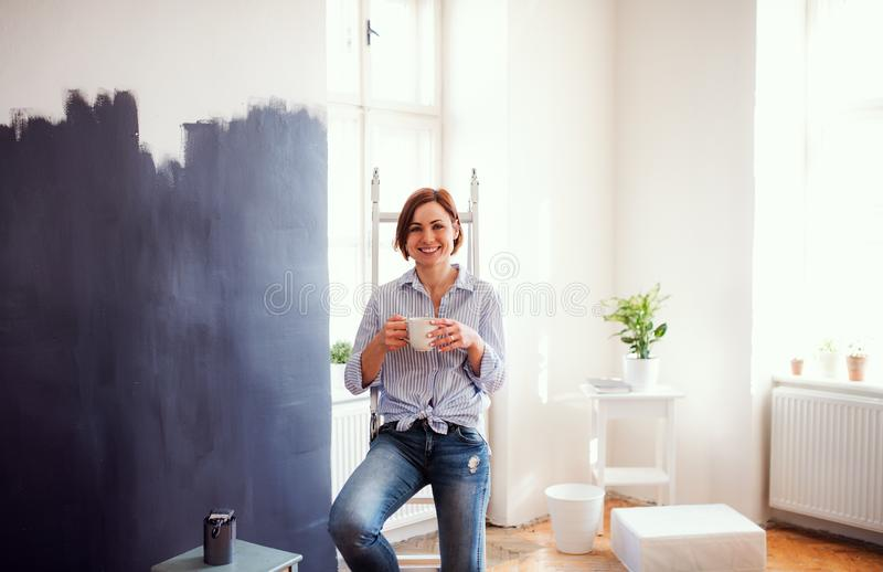 A portrait of young woman painting wall black. A startup of small business. stock image