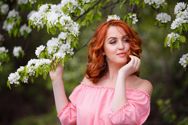 Portrait of young dreaming woman in romantic pink dress in a blooming apple garden. royalty free stock photography