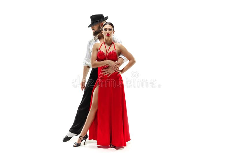 Portrait of young elegance tango dancers. Isolated over white background. Portrait of young elegance tango dancers isolated over white background stock photography
