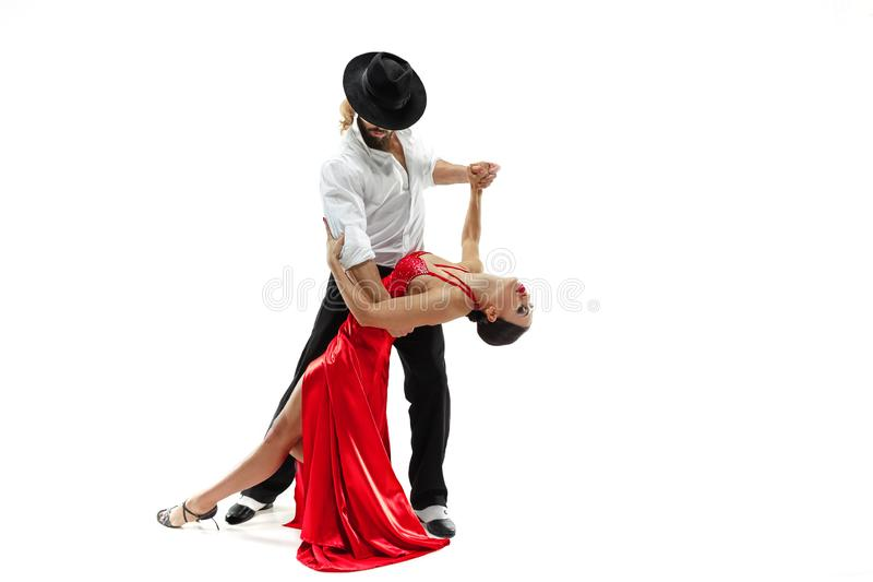 Portrait of young elegance tango dancers. over white background. Portrait of young elegance tango dancers over white background royalty free stock photo