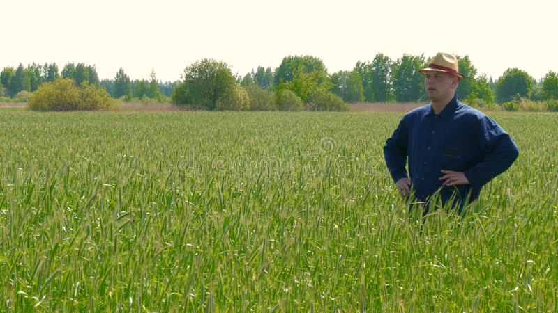 Portrait of a young guy man in a working uniform and a straw hat in the middle of a field around wheat and hay, running around i. T and checking the wheat for stock photos