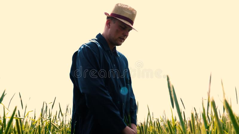 Portrait of a young guy man in a working uniform and a straw hat in the middle of a field around wheat and hay, running around i. T and checking the wheat for royalty free stock image