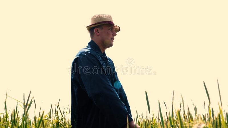 Portrait of a young guy man in a working uniform and a straw hat in the middle of a field around wheat and hay, running around i. T and checking the wheat for royalty free stock photography
